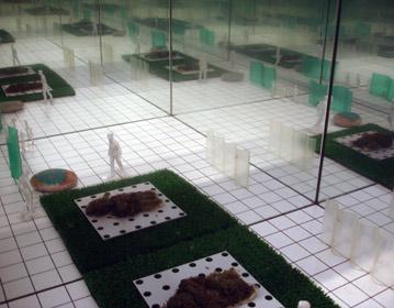 The new Domestic Landscape   MoMA 1972 Arthur Ross Gallery, Columbia University 2009 | Cristiano Toraldo di Francia